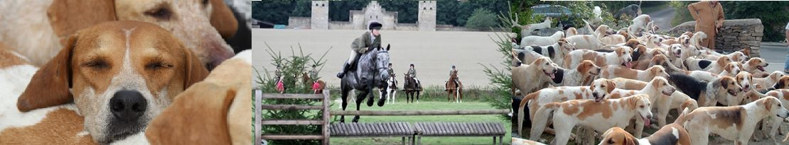 Beaufort Hunt Supporters Club Show